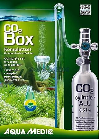 Kit completo Co2 para plantas de acuario 0,5L