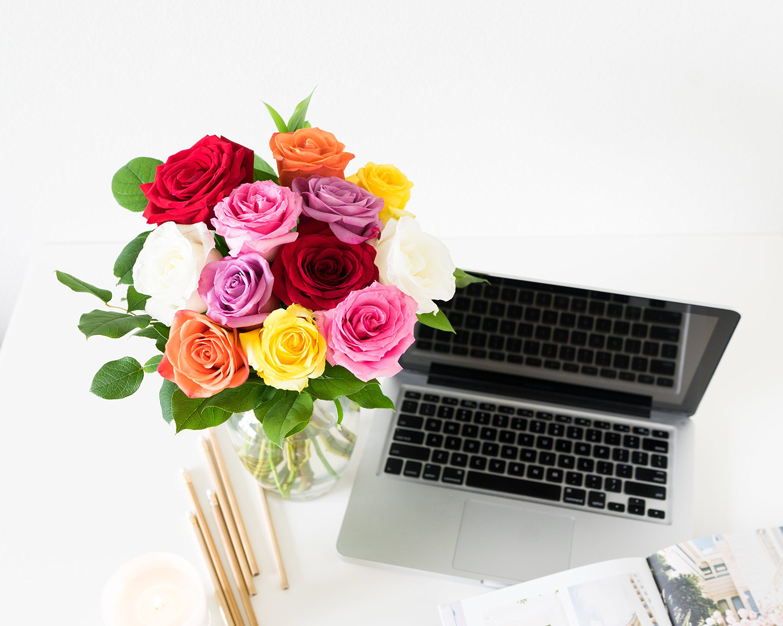 Flowers - One Dozen Multi-Color Roses (Free Vase Included)