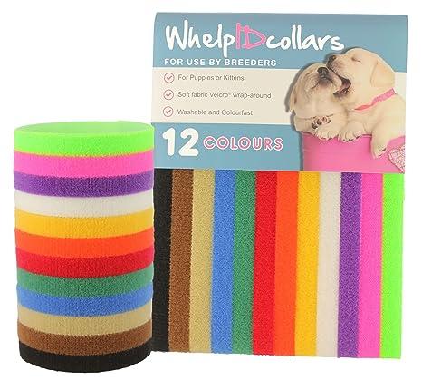 Collares de identificación para cachorros, cierre de velcro auténtico, de WhelpIDcollars