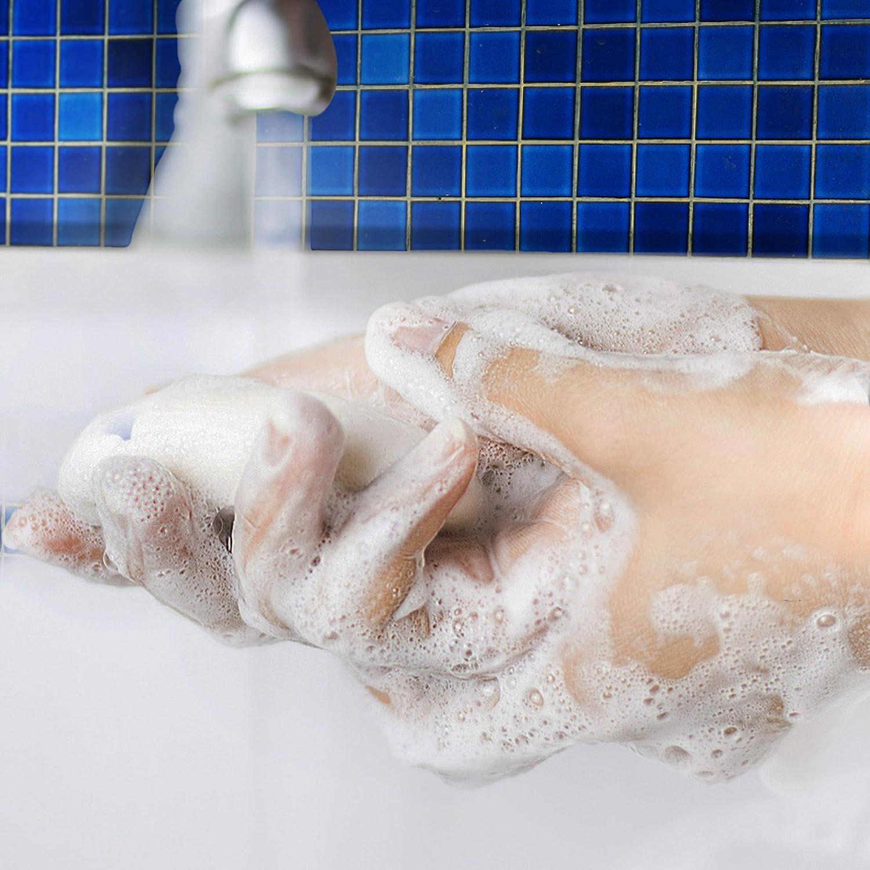 Dial Antibacterial Bar Soap, Lavender & Twilight Jasmine, 32 Bars : Beauty