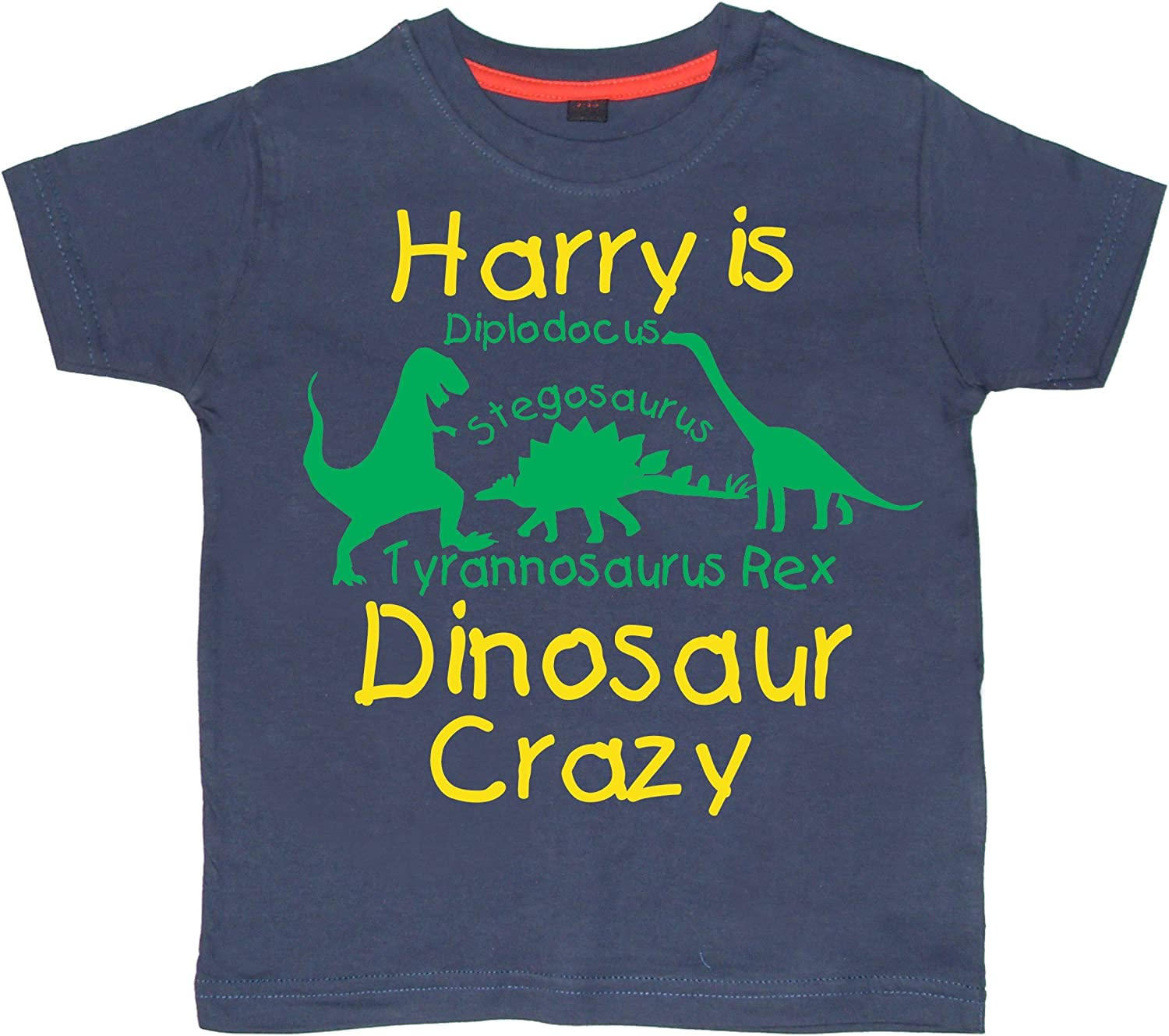 Kids//Child/'s Personalised Dinosaur  T Shirt Great Gift Idea For Any Fan