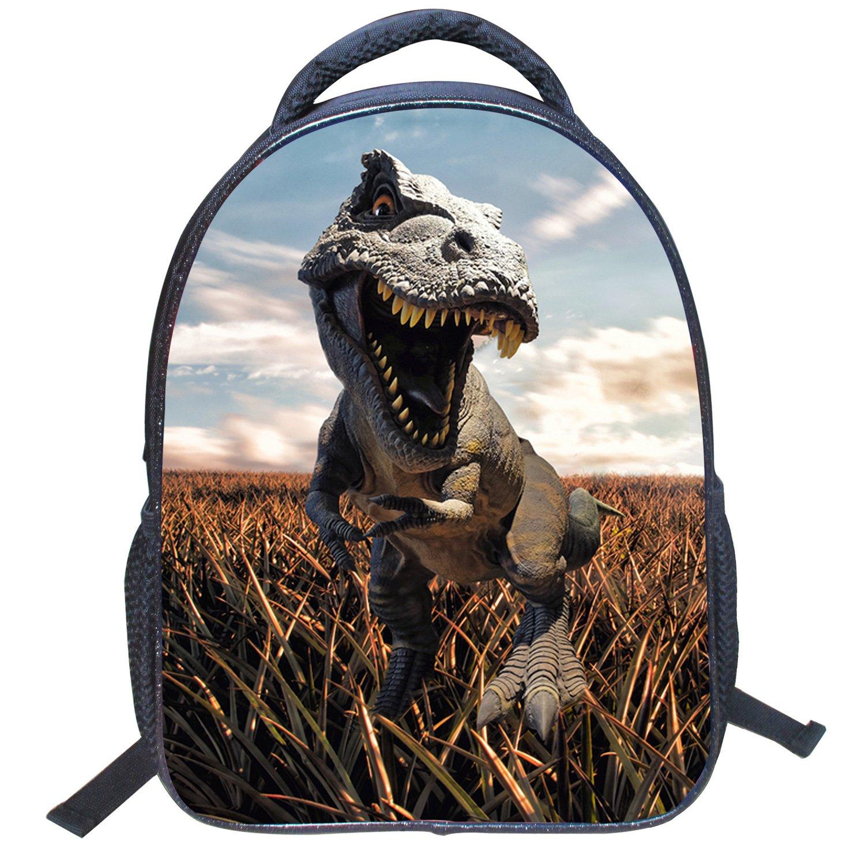 AnKoee Maternelle École École Secondaire Primaire Sac à Dos Dinosaure/Sac à Dos de Voyage/Camping/ école/Randonnée etc. (Style-01) PY80023