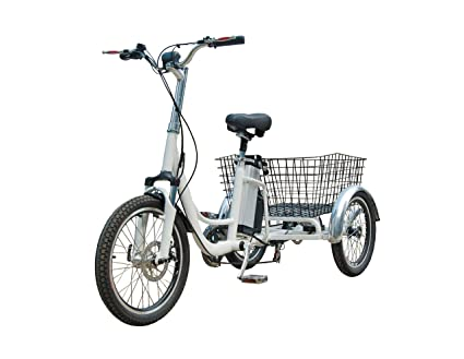 Adult tricycle dual picture 421