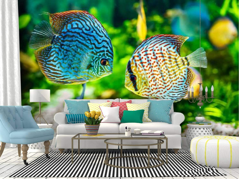 Amazon Com Self Adhesive Wallpaper Roll Paper Aquarium Displaying