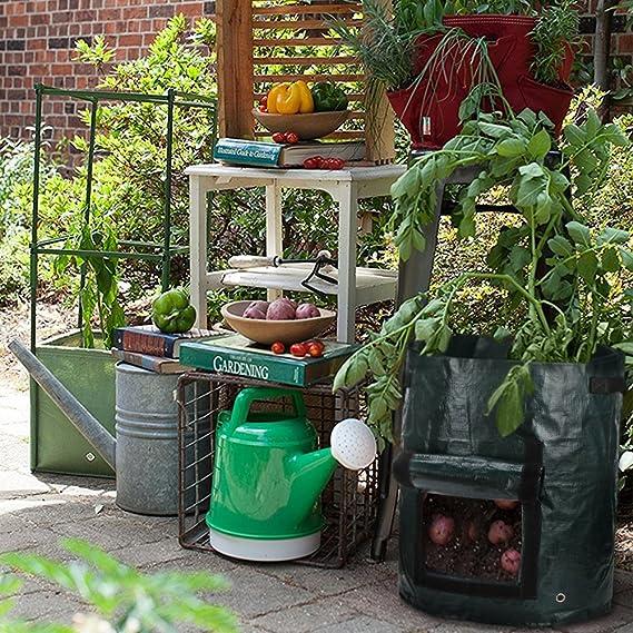 Madholly Bolsa de Plantas de 4 Piezas (por Pieza 10 galones ...