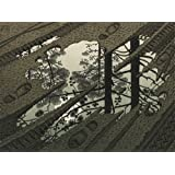 M.C. Escher Giclee Canvas Print Paintings Poster Reproduction(Puddle)