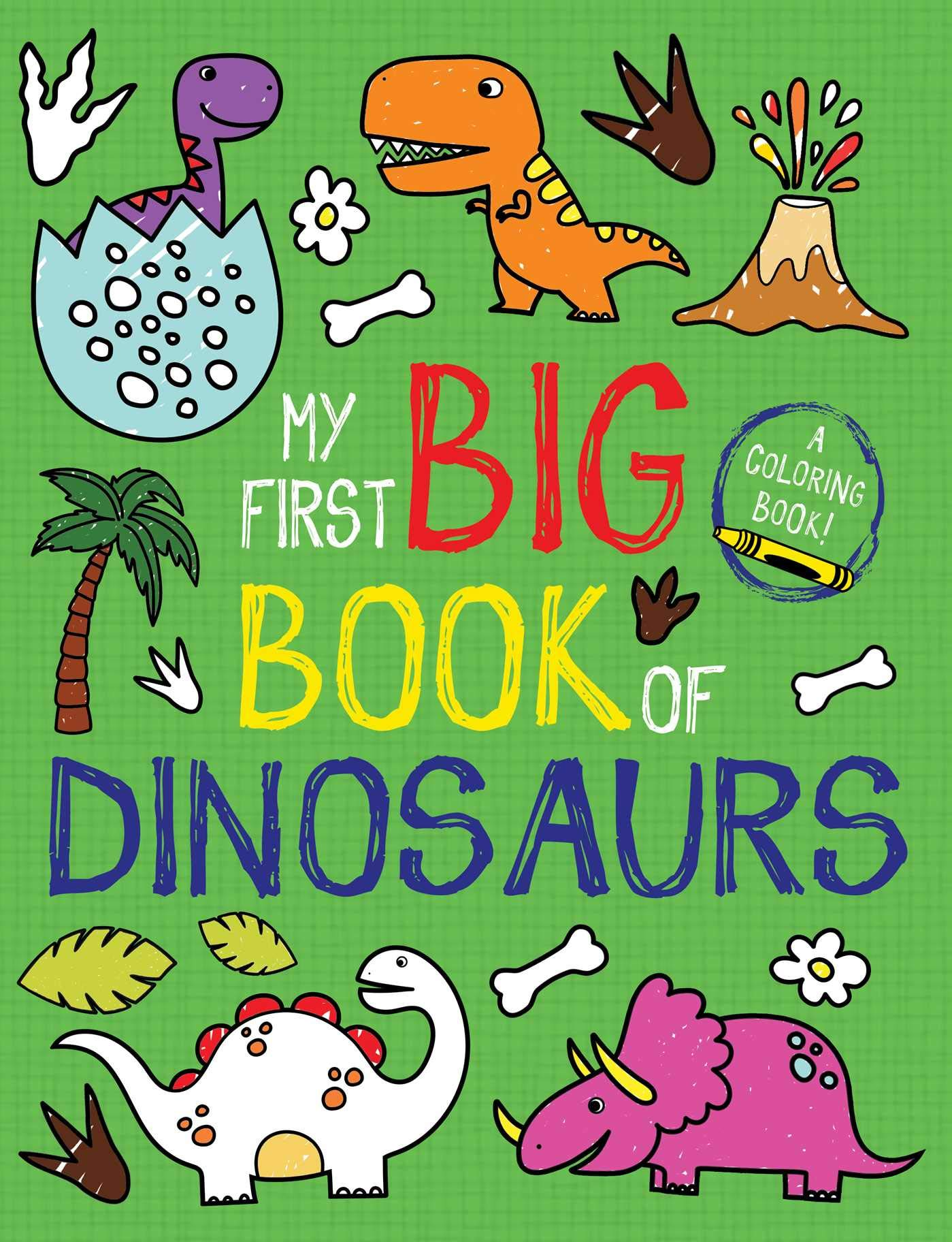 First Big Book Dinosaurs Coloring product image