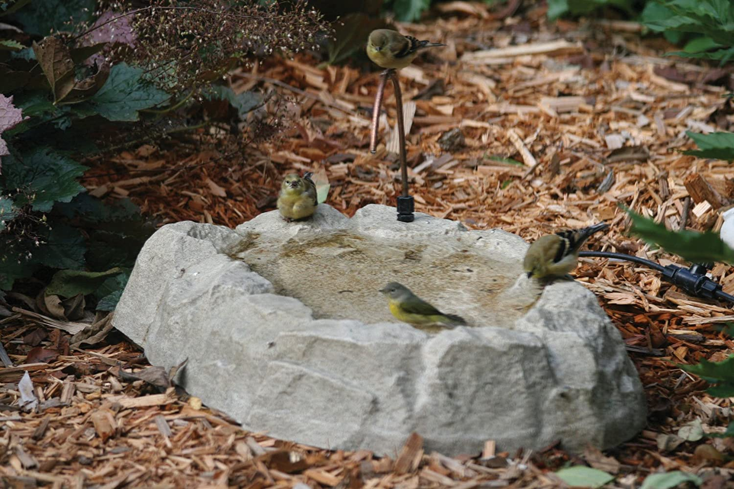 Birds Choice Rocky Mountain Ground Level Bird Bath with Dripper Tube AAB211D