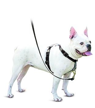 PetSafe Arnés para Perro y Coche, 3 en 1: Amazon.es: Productos ...