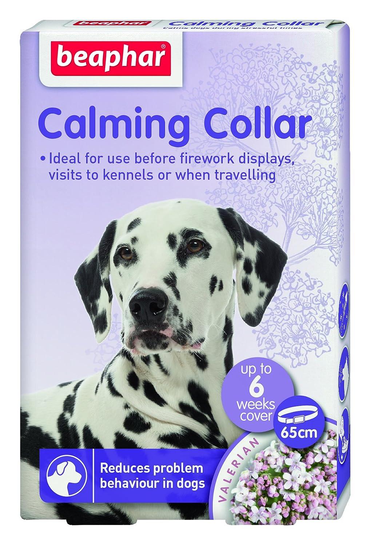Beaphar Calming Collar para Gatos, 35 cm: Amazon.es: Productos para mascotas