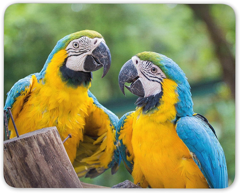 Alfombrilla de ratón con diseño de pájaros de Guacamayo, para Regalo de parot de pájaro Tropical, Ordenador #8597