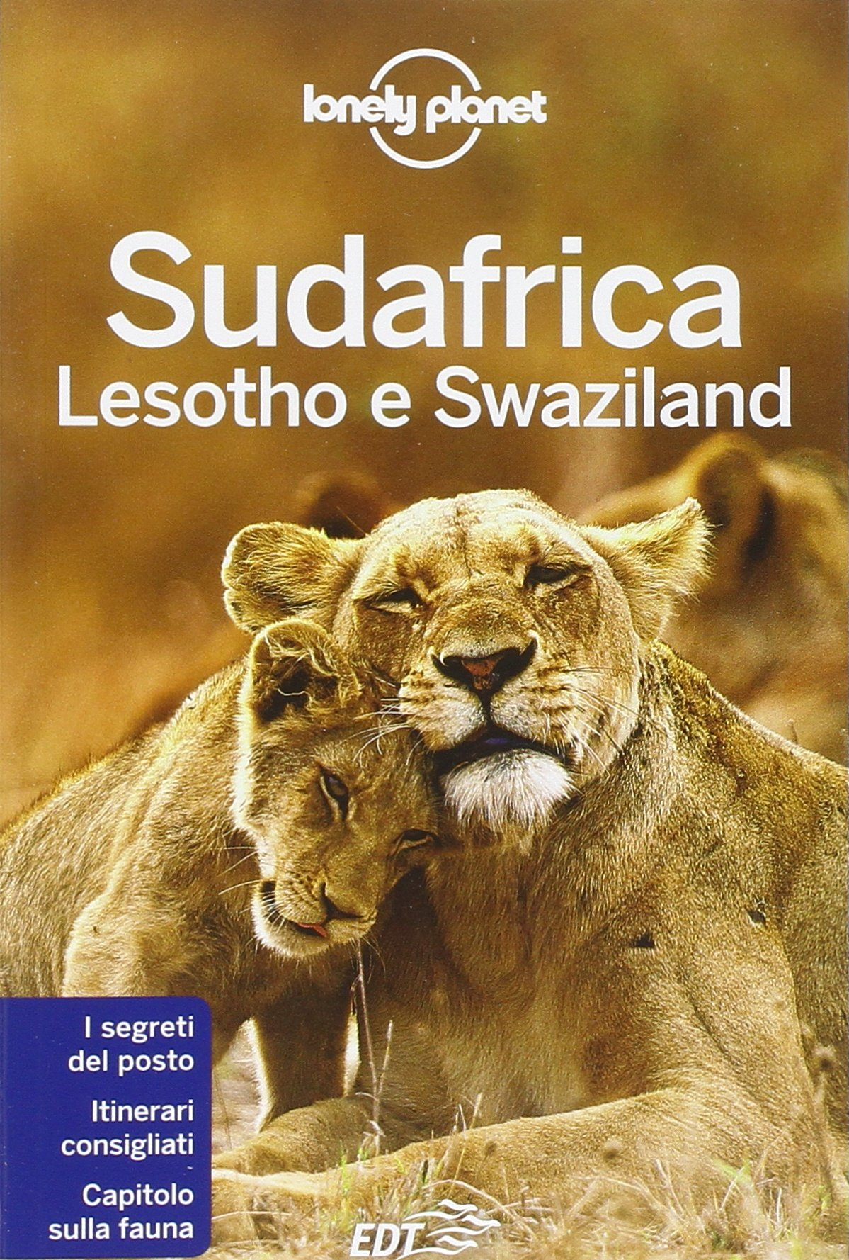 Sudafrica, Lesotho e Swaziland Guide EDT/Lonely Planet: Amazon.es ...