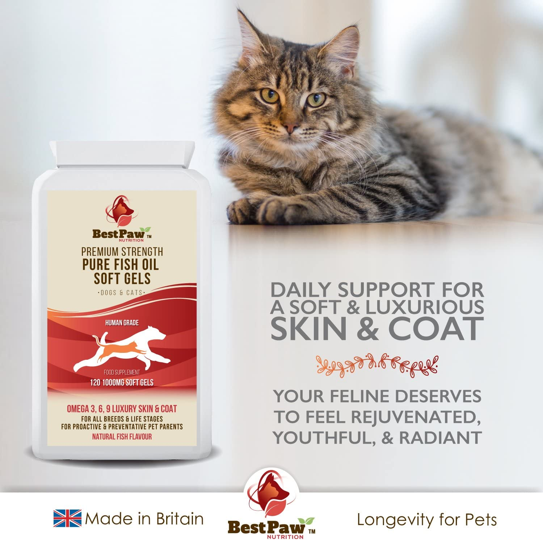 Best Paw Nutrition - Omega 3 6 9 cápsulas de Aceite de Pescado para Perros, Gatos y Mascotas - Premium 100% Natural Fish Oil Supplement For Dogs, Cats and Pets: Amazon.es: Productos para mascotas