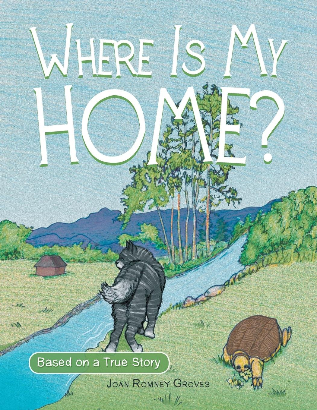 Download Where Is My Home? pdf