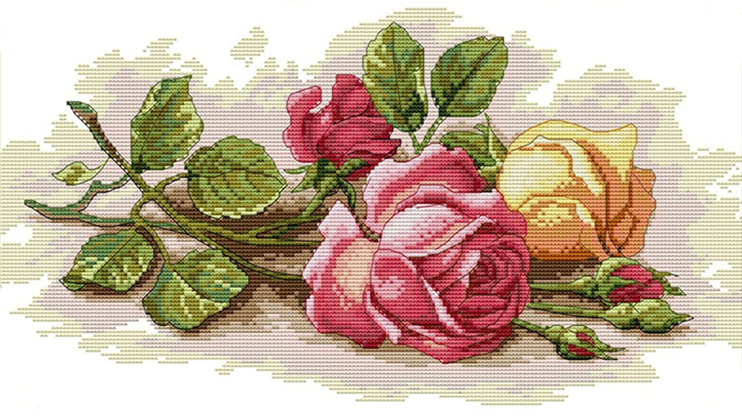 """eGoodn Cross Stitch Stamped Kit Pre-printed Pattern Birds And Flowers, 11CT Aida Fabric Size 16.5"""" x 24 For Embroidery Needlework Art Crafts Lovers, No Frame ED91"""