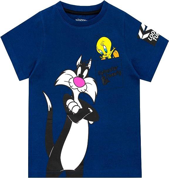Looney Tunes Camiseta de Manga Corta para niños Sylvester y Tweety: Amazon.es: Ropa y accesorios