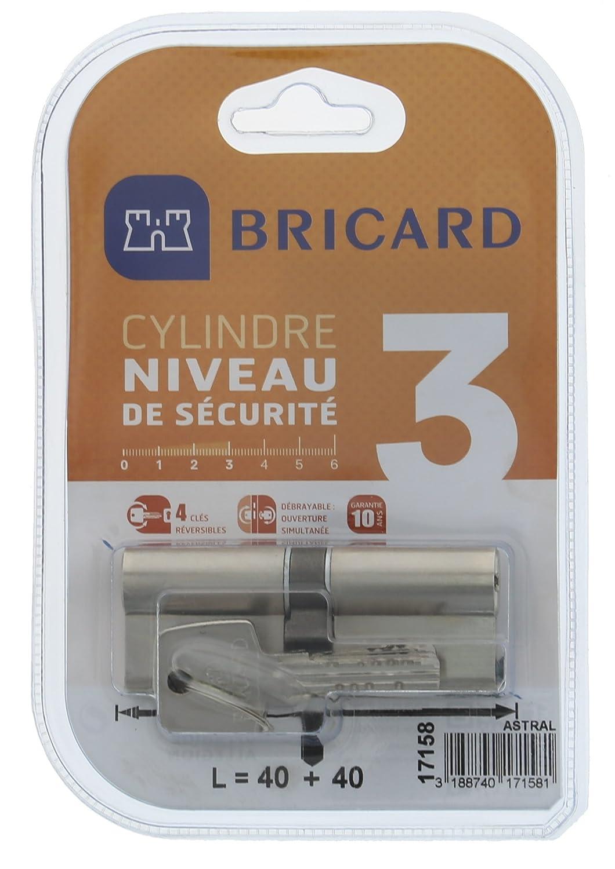 80 Bricard 17158 Cylindre D/ébrayable Astral 2,9 en Laiton 10 Pistons Protection Contre Le per/çage et Le crochetage 2 entr/ées 40 Acier Nickel/é Carte personnelle