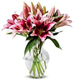Benchmark Bouquets 8 Stem Stargazer Lily