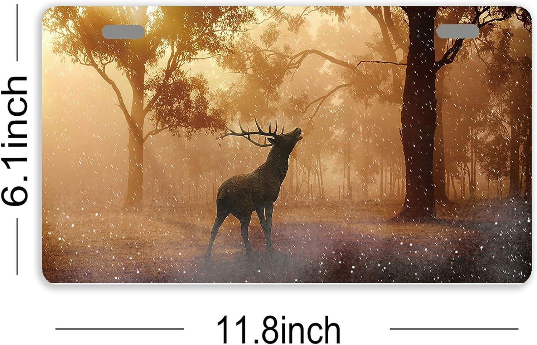 Deer On Woodland Metal License Plate