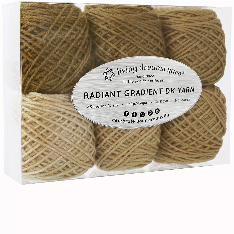 Living Dreams Radiant Gradient DK Yarn. Super Soft Merino Silk. USA Hand Dyed: Aegean Sea Living Dreams Yarn