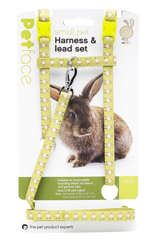 Petface Conejo arnés, Grande: Amazon.es: Productos para mascotas