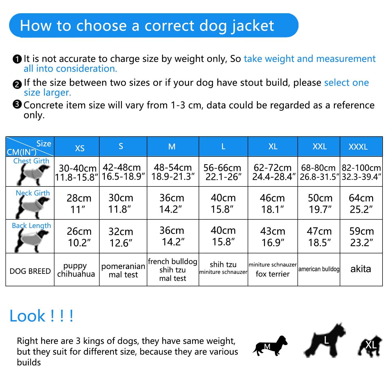 ThinkPet Chaqueta Perro Reversible Ropa para Perro Escocesa Abrigo Perro Impermeable de Cuadros británicos para Perros pequeños