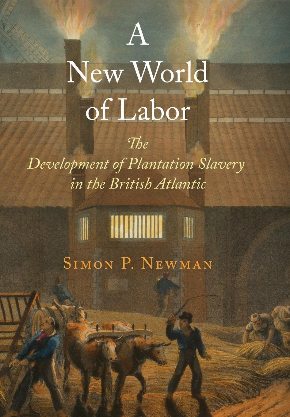 A New World of Labor: The Development of Plantation Slavery in the British Atlantic (The Early Modern Americas) pdf