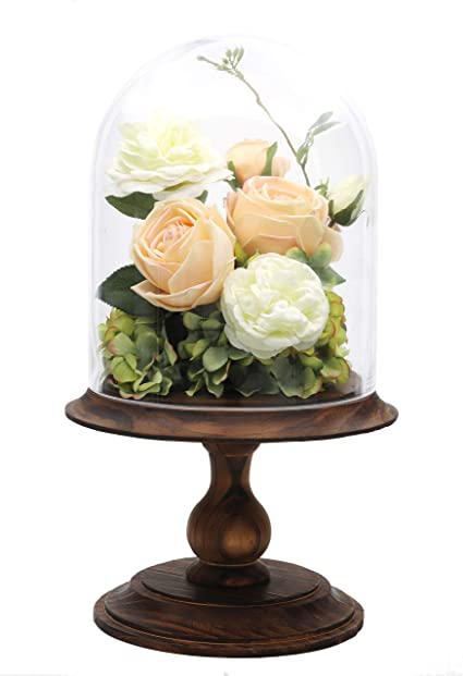 Ncyp Glass Dome With Wood Base Large Pedestal Clear Cloche Bell Jar Display Stand For Rose Flowers Plants Home Decoration Rustic Wedding Centerpiece Birthday Gift No Plants Included Amazon Co Uk Kitchen Home