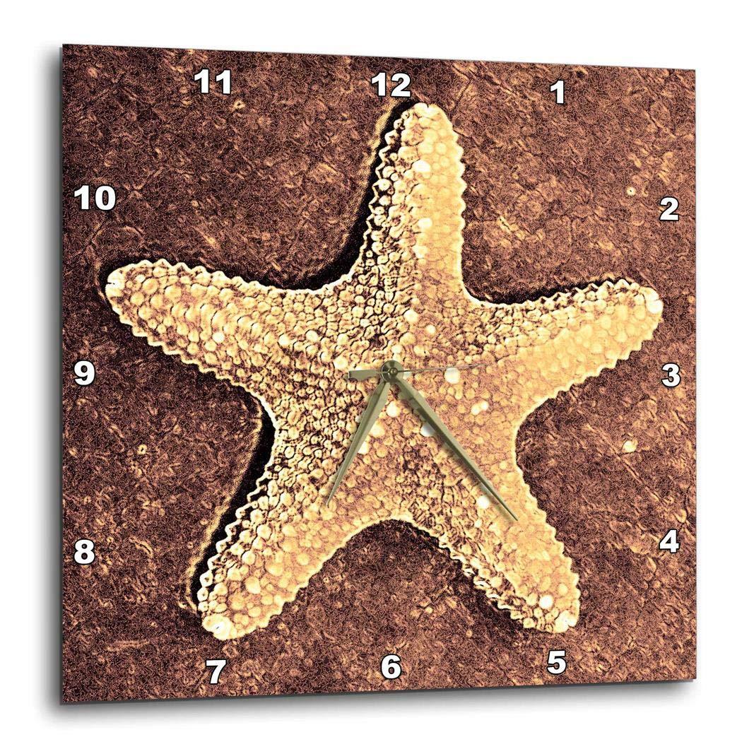 10 by 10-Inch 3dRose dpp/_27958/_1 Bronze Starfish-Wall Clock