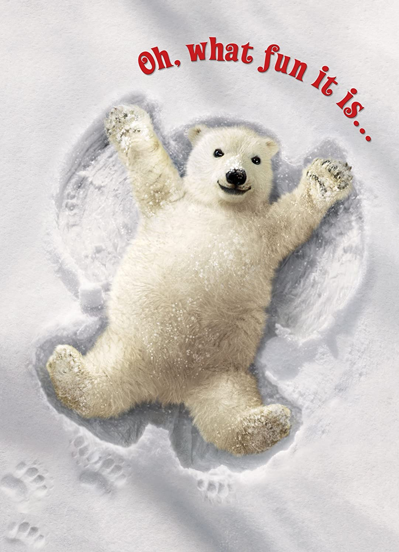Amazon Avanti Press 700412 Christmas Cards Really Big Snow