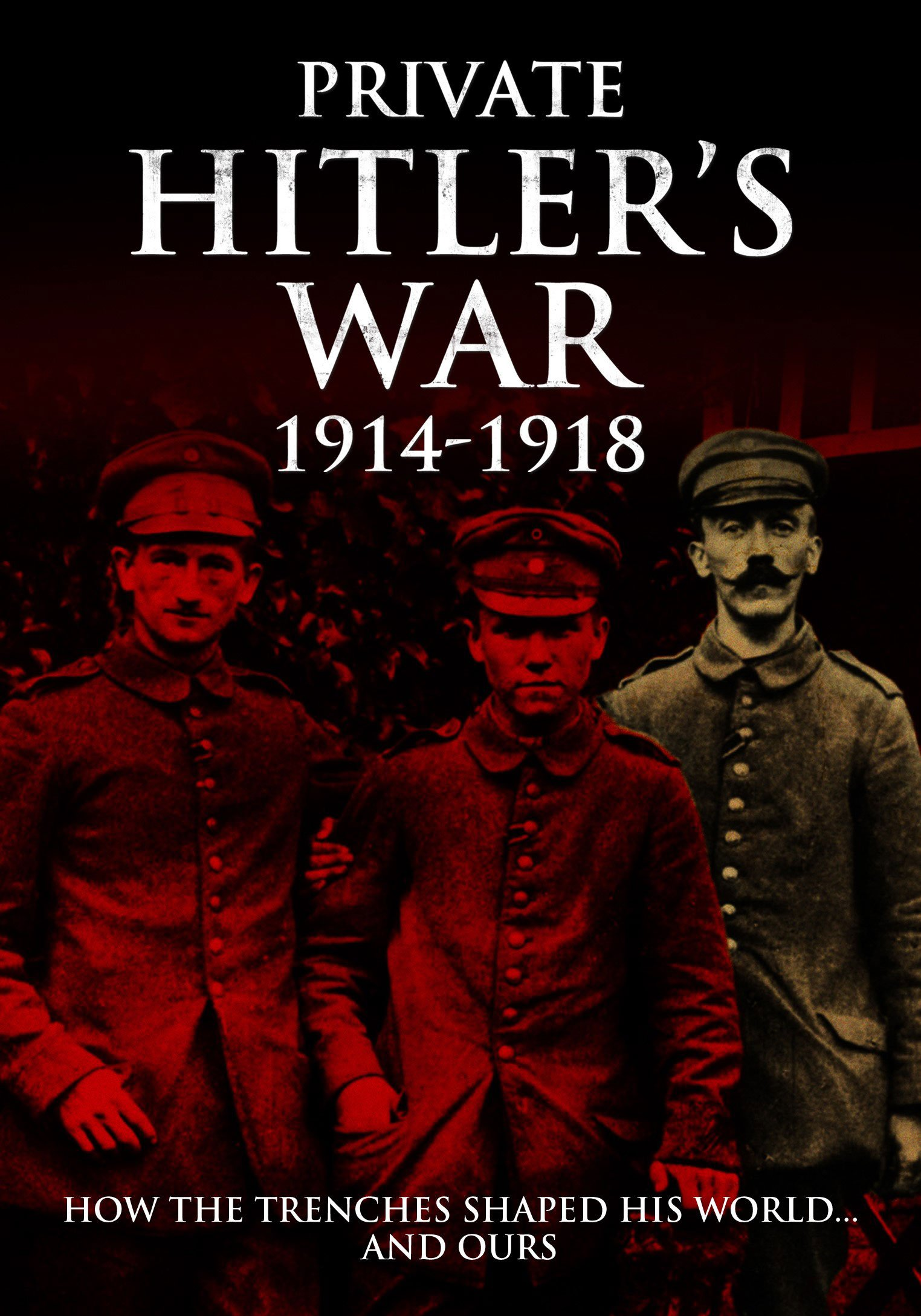 Download Visions of War - Private Hitler's War (Eyewitnesses from the Great Wat) ebook