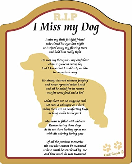 I Miss My Bernese Mountain Dog     8x10 (Male) Poem with