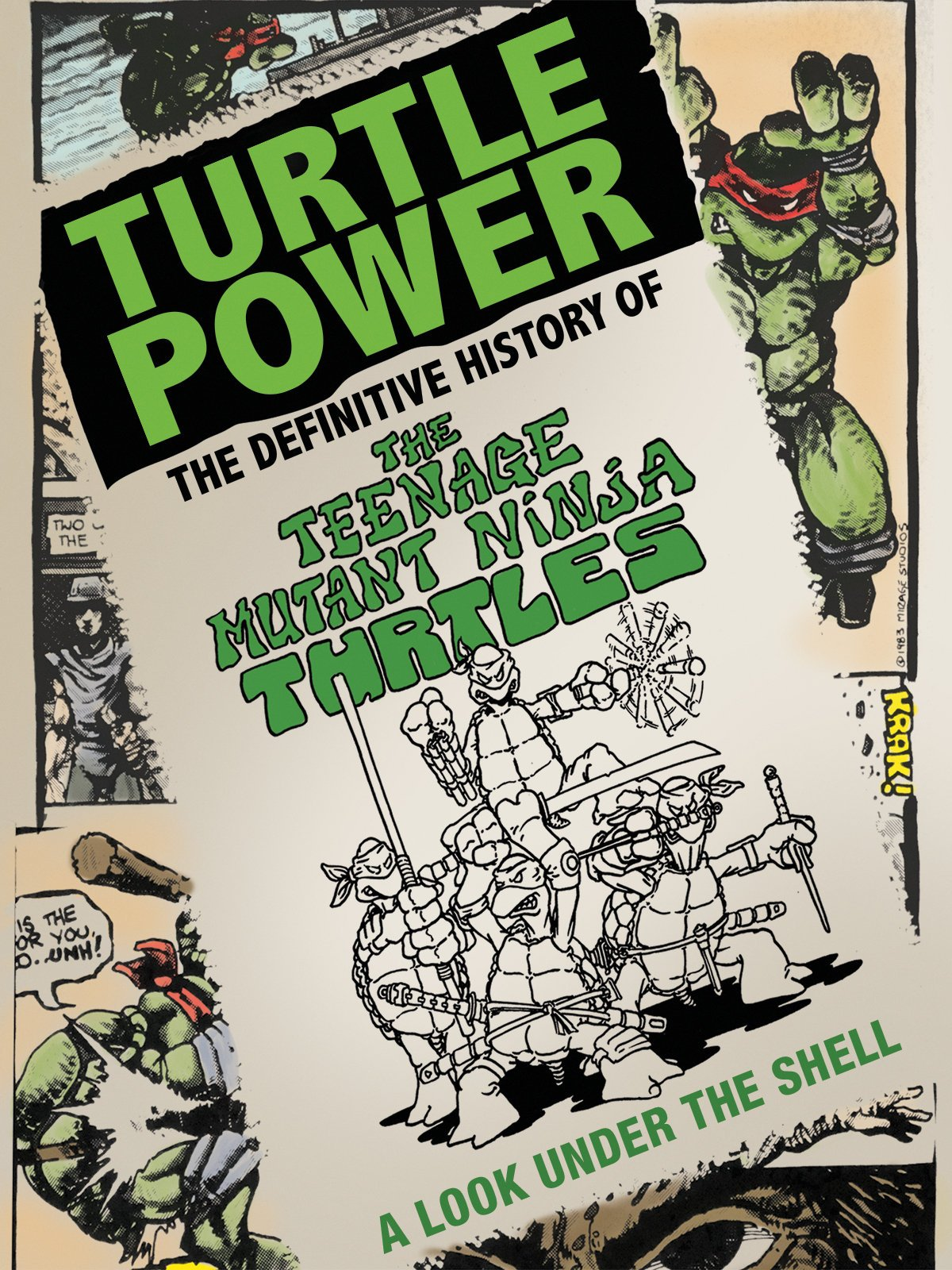 Amazon.com: Turtle Power: Peter Laird, Kevin Eastman, Mark ...