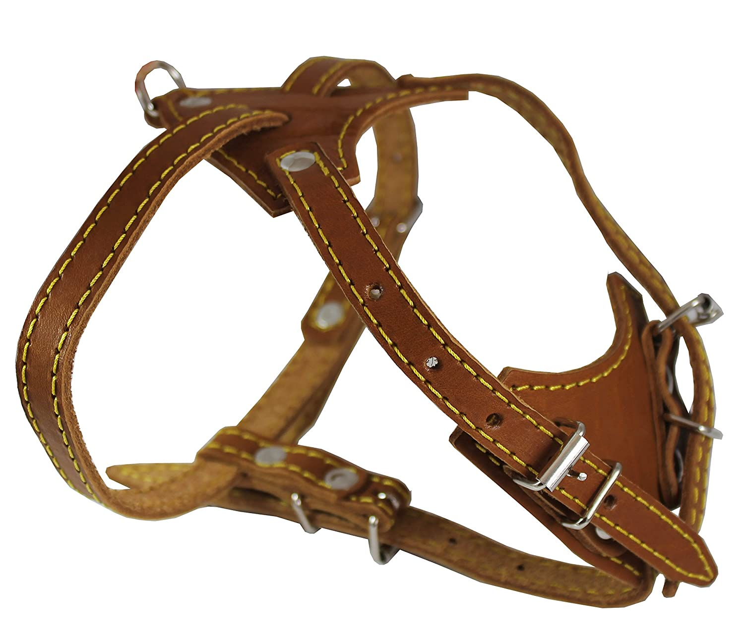 Genuine Leather Dog Harness, 16.5 -20  Chest size, 1 2  Wide, Boston Terrier