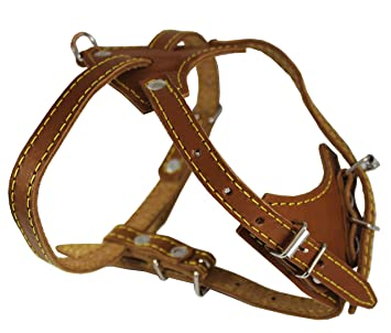 Amazon.com : Genuine Leather Dog Harness, 16.5