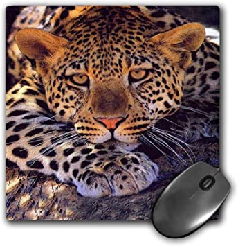 Gaming Mouse Pad Non-Slip Water Resistant Rubber Base Cloth Computer Mouse Mat-Beautiful Trendy Girly Leopard Animal Print Mousepad