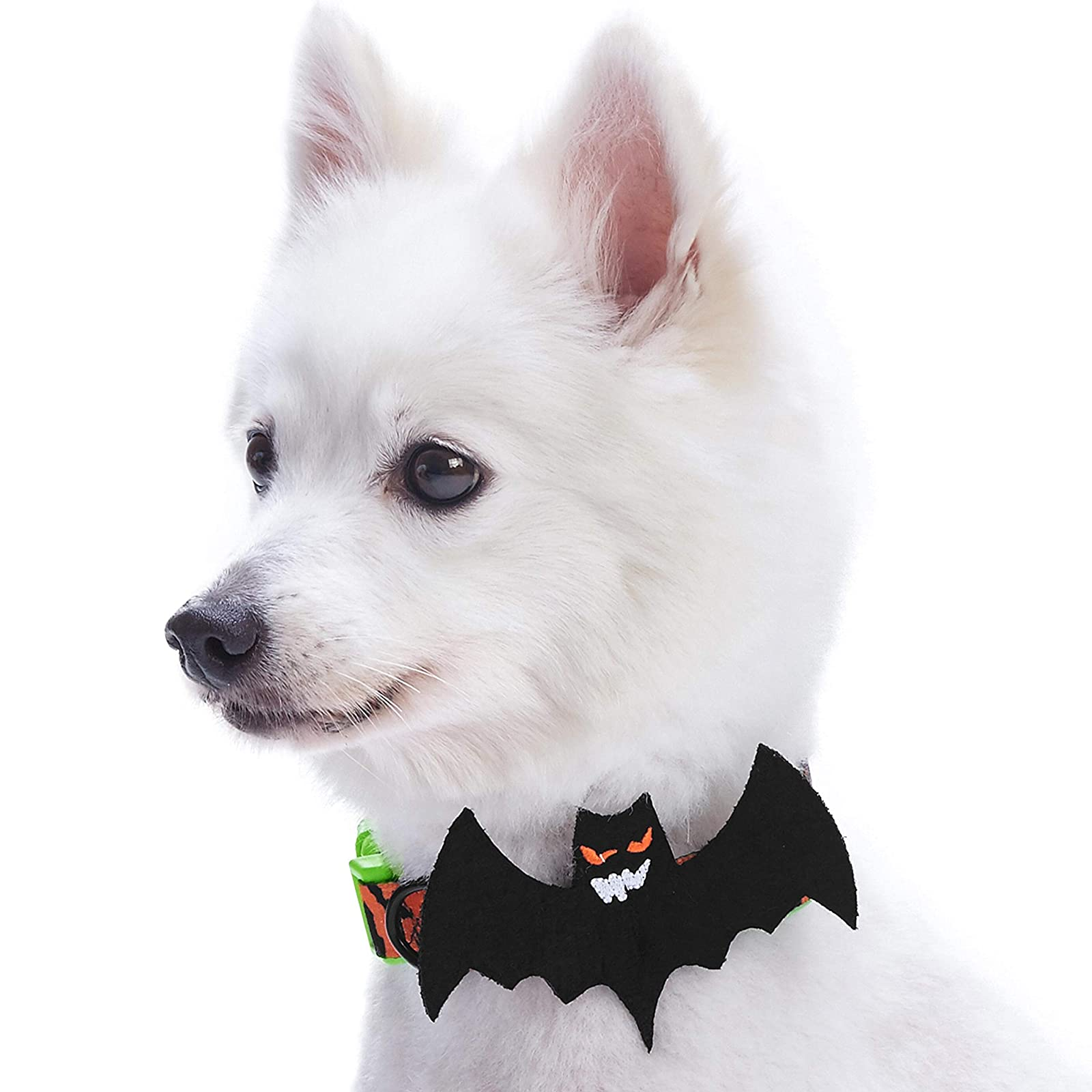 Blueberry Pet 8 Patterns Halloween Mystery Disguise - 7