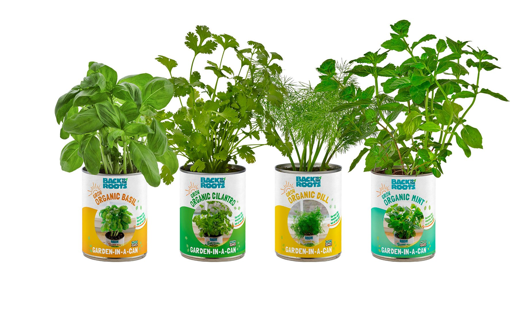 Back to the Roots Garden-in-a-Can Grow Organic Herbs Variety Pack, Basil/Cilantro/Dill/Mint, 4 Count