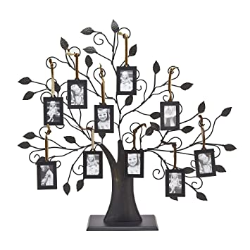 Amazoncom Philip Whitney Metal Family Tree Picture Frames With 10