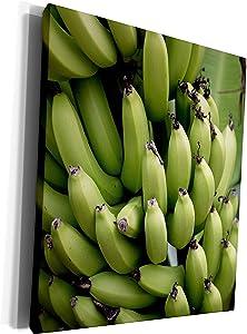3dRose Danita Delimont - Food - French Polynesia, Mangareva, Rikitea. Close up of bunch of bananas. - Museum Grade Canvas Wrap (cw_228541_1)