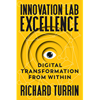 Innovation Lab Excellence: Digital Transformation from Within (English Edition)