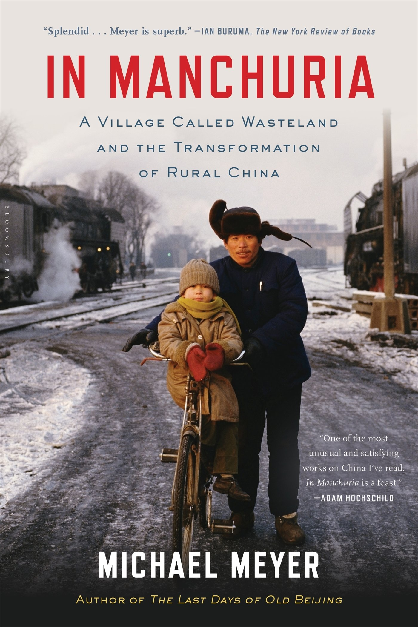 In Manchuria: A Village Called Wasteland and the Transformation of Rural  China: Michael Meyer: 9781620402887: Amazon.com: Books