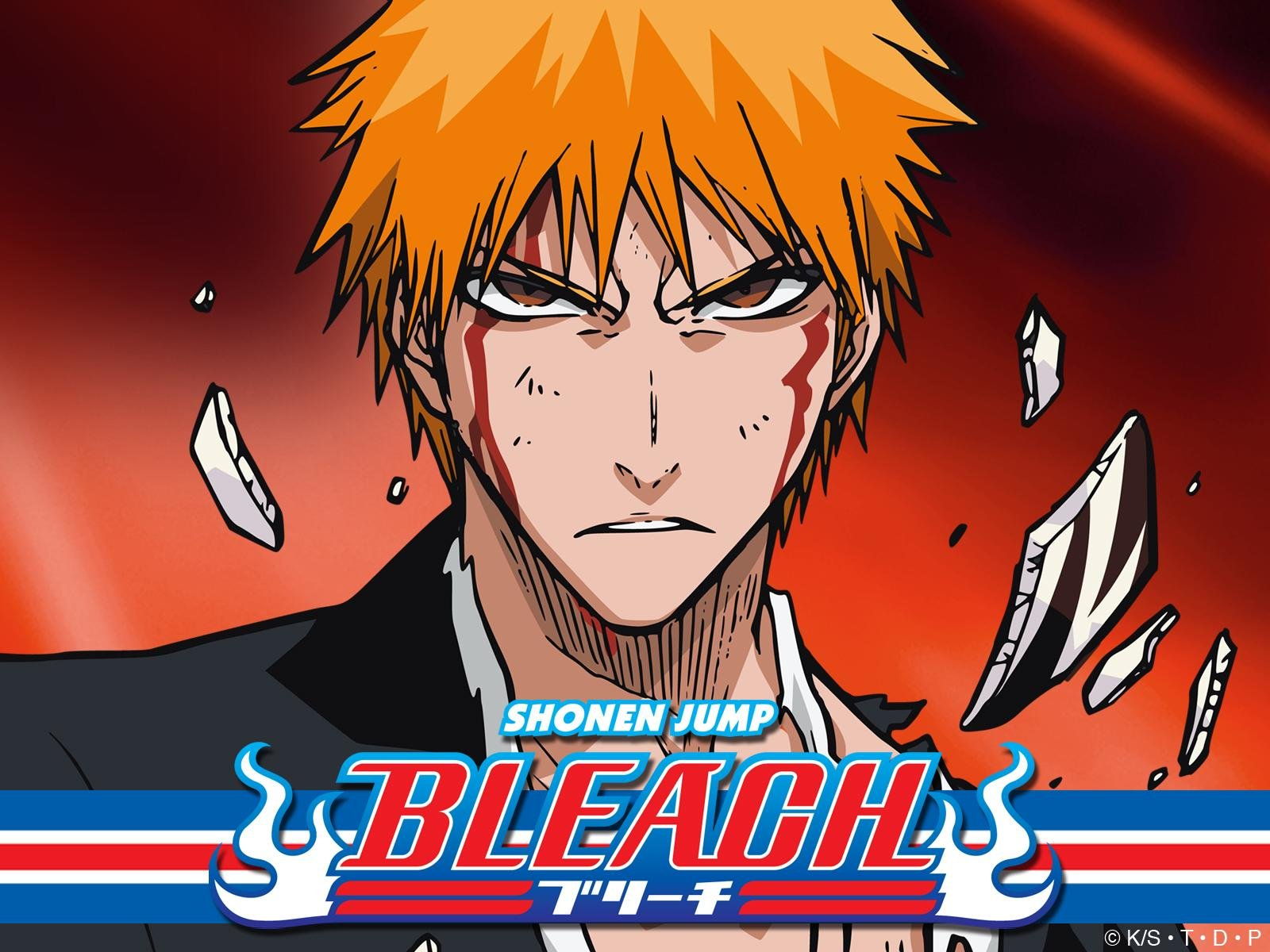 download bleach the movie 2 sub indo