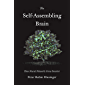 The Self-Assembling Brain: How Neural Networks Grow Smarter (English Edition)