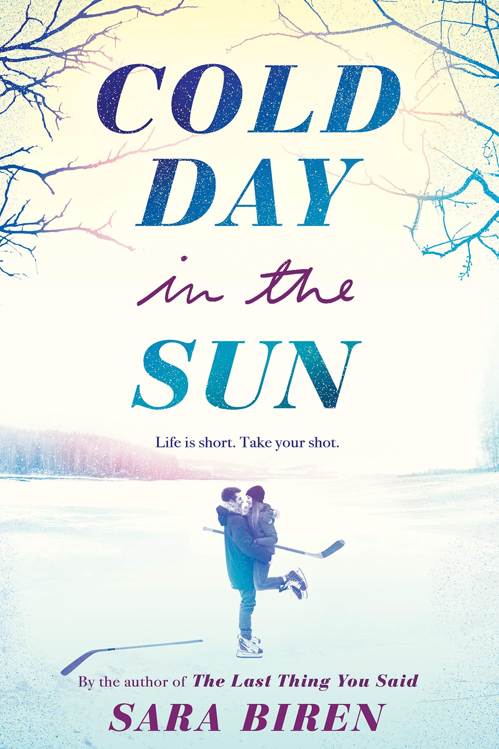Amazon.com: Cold Day in the Sun (9781419733673): Biren, Sara: Books