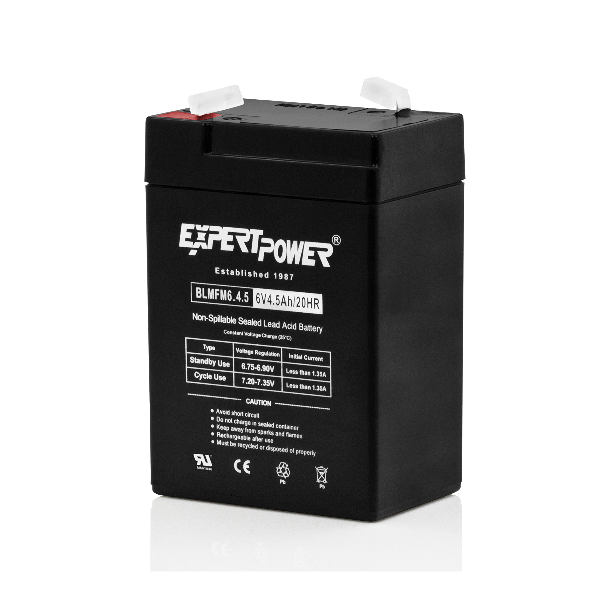 Honeywell Casil Replacement CA631 6V 3.1Ah SLA Battery for 7845GSM-K14139