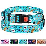 CollarDirect Floral Dog Collar Nylon Pattern Flower Print Adjustable Pet Collars for Dogs Small Medium Large Puppy