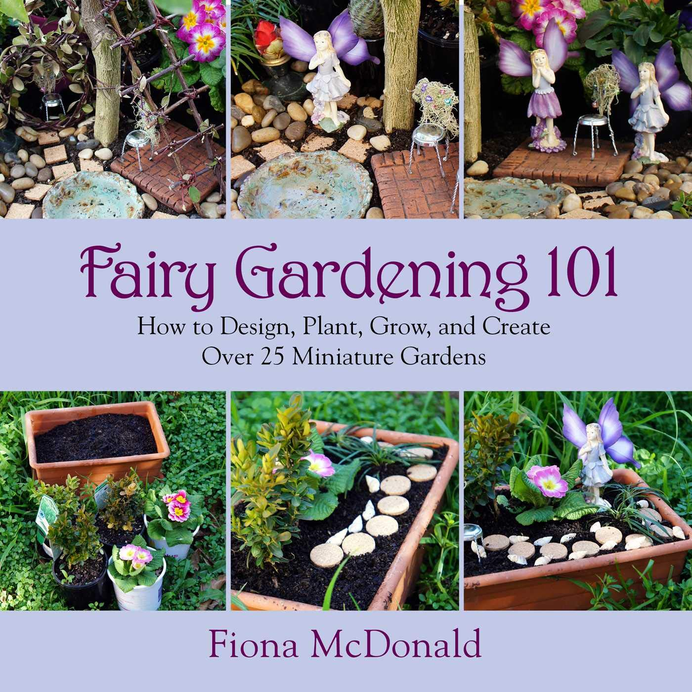 Fairy Gardening 101 How To Design Plant Grow And Create Over