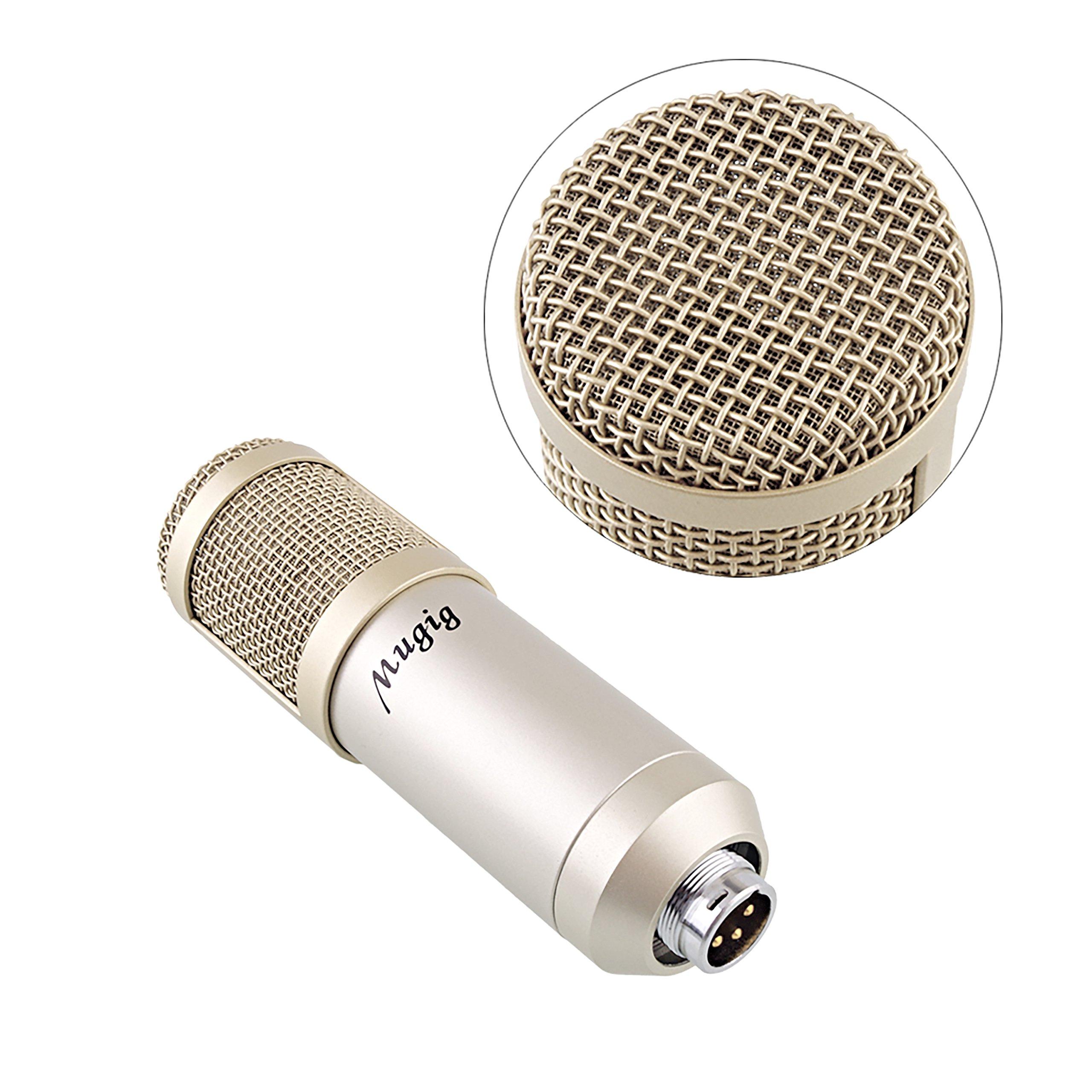 MugigKondensator Mikrofon Professionell Studio Rundfunk Aufnahme Kit Aussetzung Ständer mit Mikrofon und zwei verschieden Popschutz