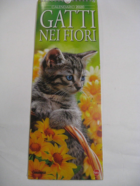 Calendario de pared con diseño de gatos y flores 2020, 41 x 14,5 cm: Amazon.es: Oficina y papelería